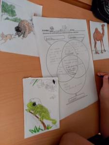 diagrama de venn animales (1)