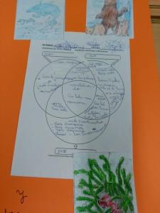 diagrama de venn animales (9)